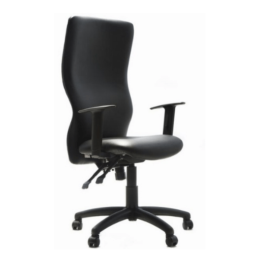 002 V1 ERGOCHAIR Executive