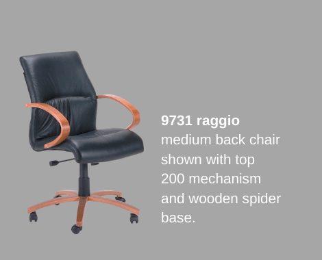 Raggio wooden range